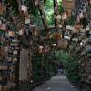 【旅行】九州周遊3泊4日の旅へ、2日目宮崎編(青島神社)