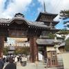 香川県 善通寺に初詣へ。混雑状況や出店、駐車場などをレポします。