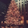 モミとドイツトウヒとクリスマスツリー: ホワイトハウスのクリスマスツリーはモミが主.ロックフェラーセンターのクリスマスツリーは,1978年以来,ドイツトウヒ.evergreen tree常緑樹であれば,何でも良さそう.「針葉樹は冬も落葉せずに緑を保つ.そのためその生命力を授かろうと身近に置いた.これがクリスマスツリーの原型と言われる」