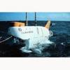 ※その魚体そのものが「潜水艇」…深海のデメニギス