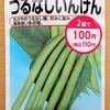 水耕栽培で「つるなしインゲン」に挑戦します。枝豆栽培の応用で育てられるでしょうか?