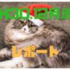 H30.12月度の結果~今年を振り返ろう~