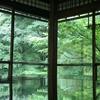 雨の瑠璃光院