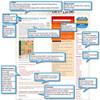 ブログのデザインをカスタマイズする時は、変更前のCSSのバックアップを取っておきましょう!