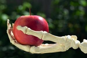 健康と若々しさは「骨」から【すぐに役立つ健康講座】