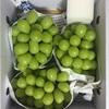 山梨県 甲府市からふるさと納税のお礼品が到着:シャインマスカット2kg