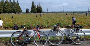 【自転車】「若葉マーク脱出計画」②~自分の頑張りが分かるサイクリスト必須アプリ「STRAVA」