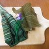 和歌山県橋本市にある創業110年の和菓子の老舗(しにせ)【金澤寿翁軒(じゅおうけん)】