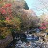 古峰神社(小峯園)の紅葉