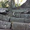 和歌山城の崖(石階段)を登る『こびと』の根っこの珍百景を見てきたぁ!小人がいる場所を教えるぞ!【和歌山県和歌山市】