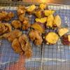 幸運な病のレシピ( 1561 )朝:煮しめ、鮭(味噌)、塩サバ・手羽(麹)、鶏唐揚、芋天、味噌汁、父の朝食風景