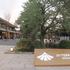 大阪城公園内に飲食店を中心とした集合施設「JO-TERRACE OSAKA」がオープンしていた!