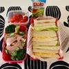 サンドイッチ〜今日のお弁当〜今日のわんこ〜