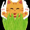 猫が食べる「猫草」って何なの?食べる理由とメリット・デメリット