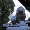京都、雪降る