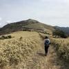 「金冠山」と「達磨山」伊豆の絶景を楽しむ山登り