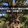 鹿児島のパワースポット「蒲生の大楠」は日本一の巨樹です