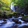 📸滝を撮りに行ったら崖から転落しました。⚰