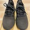 ヒルナンデスで世界一快適と絶賛されたallbirdsの靴を買ったら最高だった!