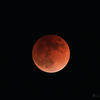 600mm望遠レンズで皆既月食の観察 2018年1月31日