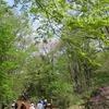 2019.05.03 赤城自然園ふたたび