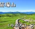 真夏日に天空の楽園「苗場山」へ(小赤沢コース)