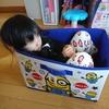 【子供】末っ子ちゃんは箱が大好き、箱入り娘!? 箱好き子供