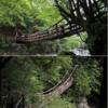 【奥祖谷二重かずら橋】四国・徳島のオススメ観光スポット【夫婦橋】