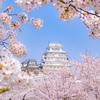 日本全国の桜の名所なお城、花見にオススメなお城一覧【2020年版】