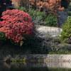 練習あるのみ風景撮影-池①-