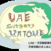 UAE・子宮動脈塞栓術の手術体験のまとめと感想
