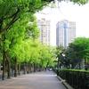 上海ひとり旅 [2]【漢院近くのビジネスホテルでの生活】