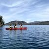 十和田湖の特別保護区の秘境をカヌー探検