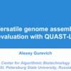 ラージゲノムにも対応したアセンブリ評価ツール QUAST-LG