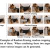 画像を混ぜ合わせるData Augmentationの紹介