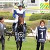 【ウマフリ記事紹介】POGファン必見!2017年度新種牡馬に関する2記事