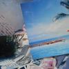 EVANESENCE   SAMUI ISLAND 1996