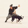 """SAMURAI DOG"" The Road to Crufts 2019 #5"