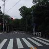 静岡に行ってきた