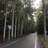軽井沢 旧三笠ホテル 雲場池 離山 旅ランしてきました