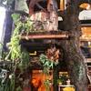 広尾のカフェ「レ・グラン・ザルブル」はお洒落なツリーカフェ