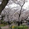 東京散歩 四谷ー千鳥ヶ淵ー東京駅
