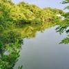 筧池(愛知県名古屋)
