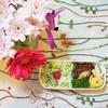 ハンバーグ弁当/My Homemade Boxed Lunch/ข้าวกล่องเบนโตะสำหรับสามี