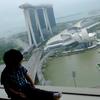 3歳児と行く冬のシンガポール ホテルステイを満喫