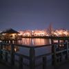 長岡天満宮八条が池の桜ライトアップ@2021
