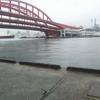 ≪実釣編≫神戸港東側で釣りをする