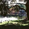 ボストン・コモン公共公園