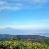 絶景、楽ちんな山登り。伊豆の達磨山へ