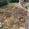 草むしり 地下茎をやっつけるの巻